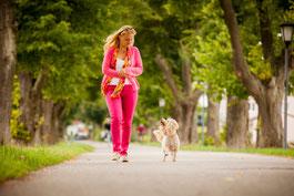 Wohlfühlbehandlungen und Tierkommunikation für und mit Tieren