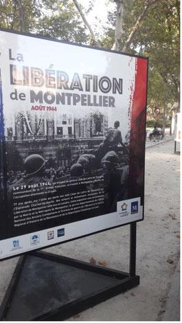 Affiche libération de Montpellier anocr34.fr