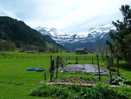 Garten des Wohnheims Burgbühl an der Lenk