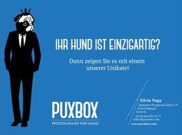 Logo PUXBOX - Pfotengwand von Hand