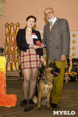 Аванти, Чемпион, Лучший представитель породы, немецкая овчарка, питомник собак,  Milivoje Urosevic