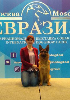 ЕВРАЗИЯ, Москва, выставка собак