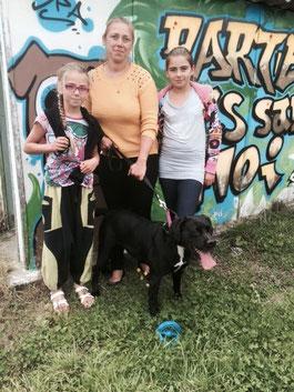Adoption d'Anubis - chienne du refuge du Penthièvre - SPA en Côtes d'Armor