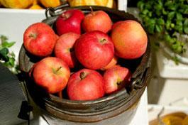 林檎(リンゴ)の免疫力効果