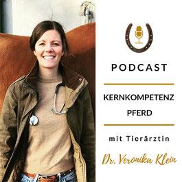 Kernkompetenz Pferd: Ergotherapie für Pferde.