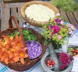 Irmi Kaiser - Kräuter und Blüten