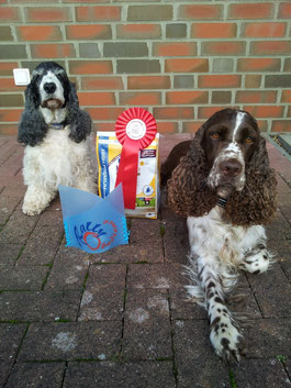 Holly and Jule after their successful Rally-Obedience-Competition this weekend. Photo: Svenja Arendt