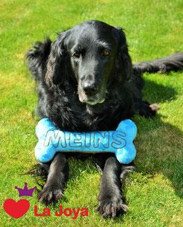 Hundespielzeug Knochen personalisiert Spielzeug Knochen für Hunde