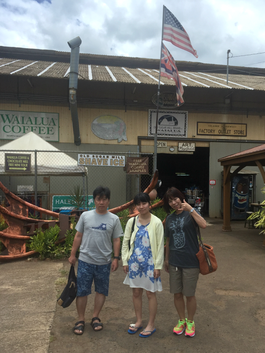 ハワイ オアフ島 ノースショア観光 貸切チャーター観光ツアー