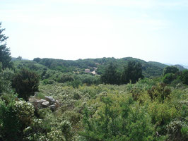 vista panoramica de Li Sciultai