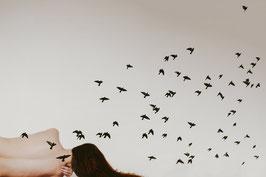 dona, volar, ocells