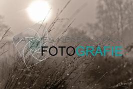 Neem ook een kijkje op mijn fotowebsite.