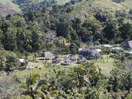 Plantios en la Polinesia