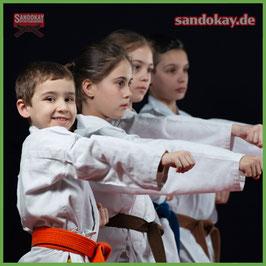 Kinder Karate Selbstverteidigung Itzehoe - erlerne eine Kampfsport -Art