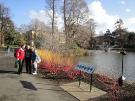 Kew Gardens 5