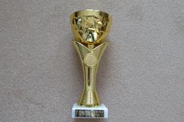 30.10.2016 GC Herbstlauf- AK Pokal von Bernd K.