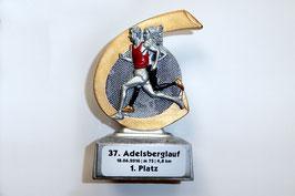 11.06.2016 Adelsberglauf von Bernd K. -  AK Sieger
