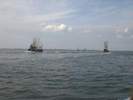 Schiffe auf der Nordsee