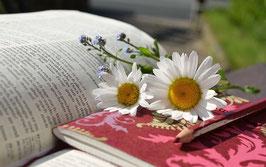 Garten Buch empfehlung