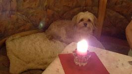 Peggy feiert Geburtstag:)