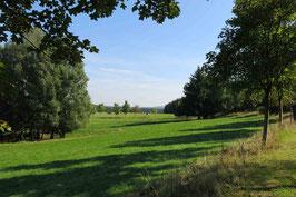Bergwiesen-Lehrpfad in Benneckenstein