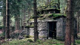 Vergessen im Harz