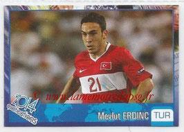 N° 421 - Mevlut ERDING (2009-Janv 12, PSG > 2013, Turquie)