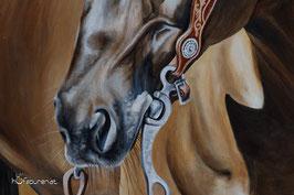 Detailansicht Pferdemaul
