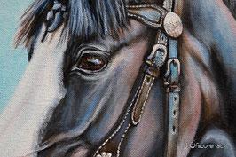 Detailansicht Pferdegemälde: Dunkelbraune Pferdeaugen von Rappe, Pferdemalerei Hanna Stemke, www.hufspuren.com