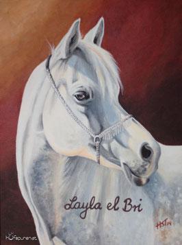 """""""Layla el Bri"""", Acryl auf Leinwand, 30x40"""