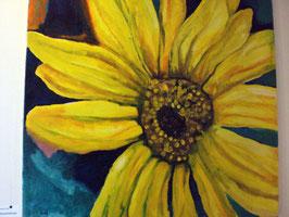 Sonnenblume 100 X 100