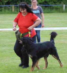 Kimani vom Pirloer Hof, bester Junghund