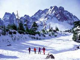 Ski Alpin (cliquer sur la photo)