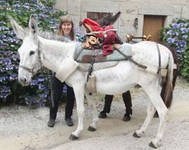 eine Wanderung mit einem Esel im Limousin