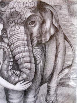 ゾウの額の模様はカーネーション