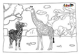 ANIKIDS Malvorlage Zebra Giraffe