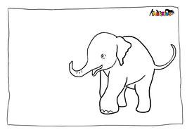 ANIKIDS Malvorlage Elefantenbaby
