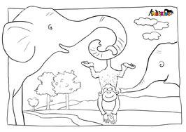 ANIKIDS Malvorlage Elefant Affe
