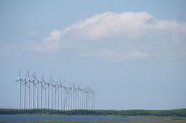 オトンルイ風力発電所と天塩川