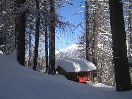 Prasüras in St.Moritz