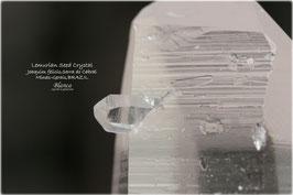 レムリアンシードクリスタル 原石 写真