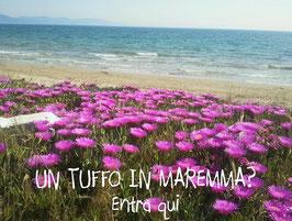 Maremma. Foto Blog Etesiaca, Itinerari di vino