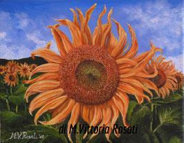 campi di girasoli, olio su tela cm 24x30, 2010