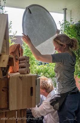 Balkon Naturgartenbalkon Bayerischer Rundfunk Sendung Querbeet