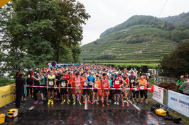 Julia Mayer Wachaumarathon 2017 Wachau Krems Viertelmarathon
