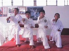 LUIS CASARUBIAS, JOSHUA RAFAEL LUNA, CARLOS ALBERTO, Y RAUL CASARUBIAS.