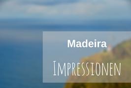 Madeira Fotos