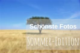 Fotos Sommer