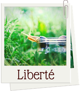 liberte - blog marie fananas écrivain