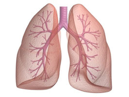 Internist Dr. Stefan Moser Atem-Tauglichkeitstest, Spirometrie, Lungenfunktionstest, Behandlung von Lungenerkrankungen und Atemnot